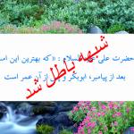 ایا حضرت علی فرمودند بهترین افرادبعد از رسول الله ص ابو بکر و عمر هستند؟